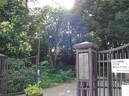 目白の森公園.JPG