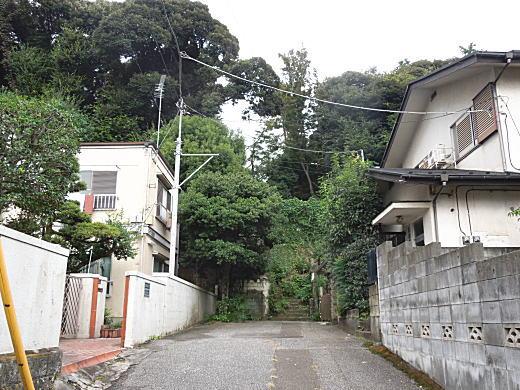目白崖線3.JPG