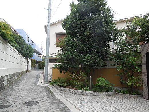 目白林泉園庭球部5.JPG