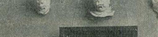 石膏型モチーフ.jpg