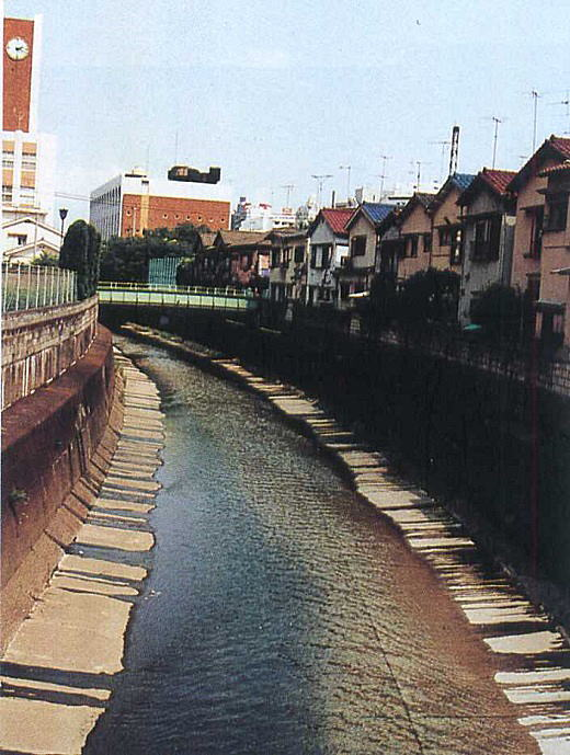 神田川と富士女子短期大学.jpg