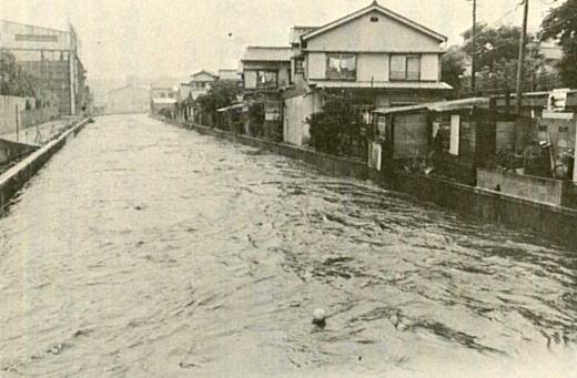神田川洪水1974.jpg