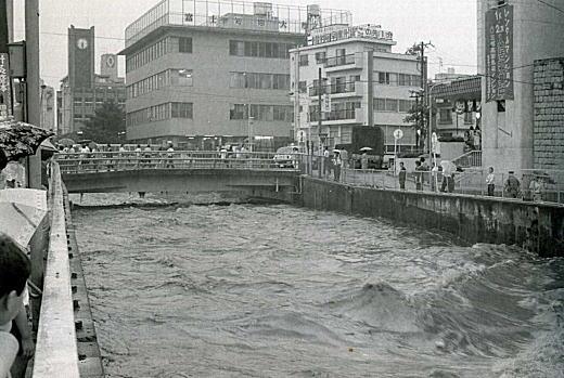 神田川洪水1981.jpg