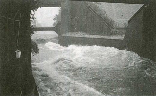 神田川洪水1993.jpg