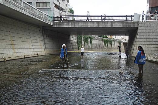 神田川神高橋.JPG