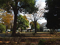 科学研究所07.JPG