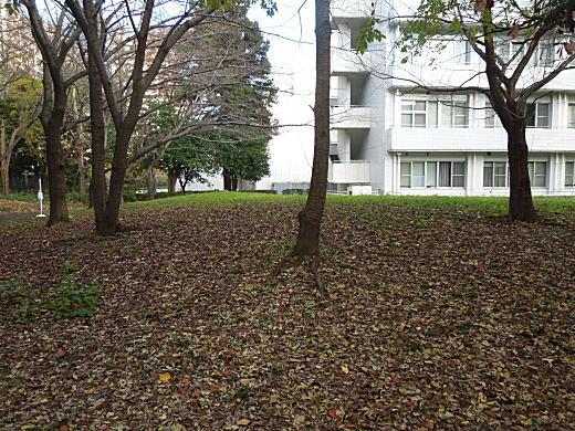 科学研究所11.JPG