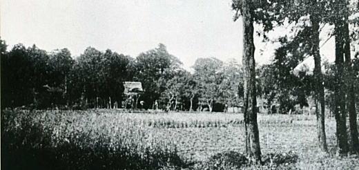 稲荷山・法明寺1890年代.jpg