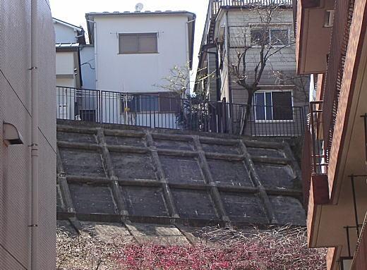 築土八幡町バッケ.jpg