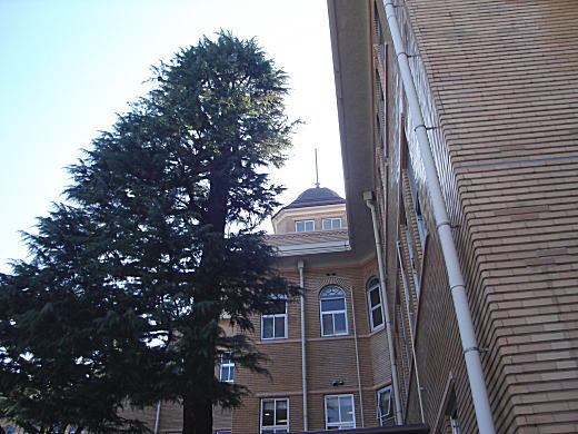 聖母病院.JPG