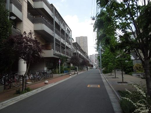 至誠殿への道.JPG