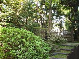 舟橋庭園1.JPG
