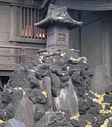 花園(新宿)富士.JPG