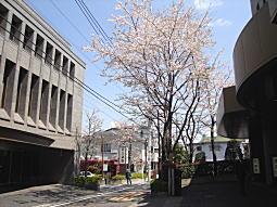落合斎場5.JPG