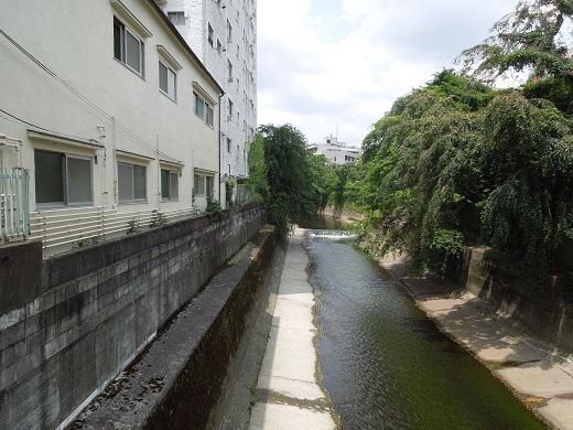 落合橋から上流.JPG