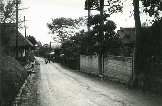藁葺き屋根19640330.jpg