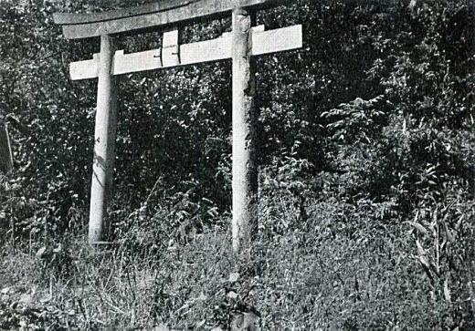 藤稲荷1955_1.jpg