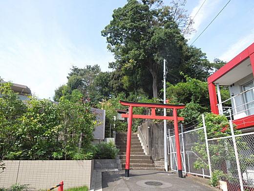 藤稲荷社1.JPG