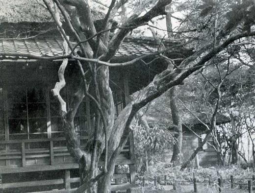 蘆花恒春公園1960頃.jpg