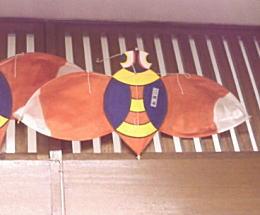 蝉凧.jpg