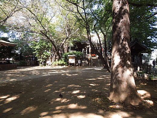 諏方神社1.JPG