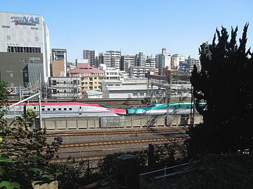 諏方神社3.JPG