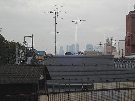 諏訪谷2.JPG