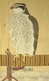鐘岱愛鷹之記19世紀.jpg