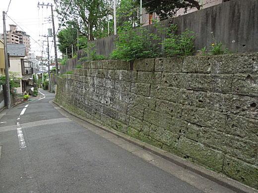 雑司ヶ谷金山.JPG