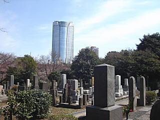 青山墓地2009.JPG
