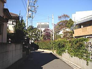 高良とみ旧邸谷間.jpg