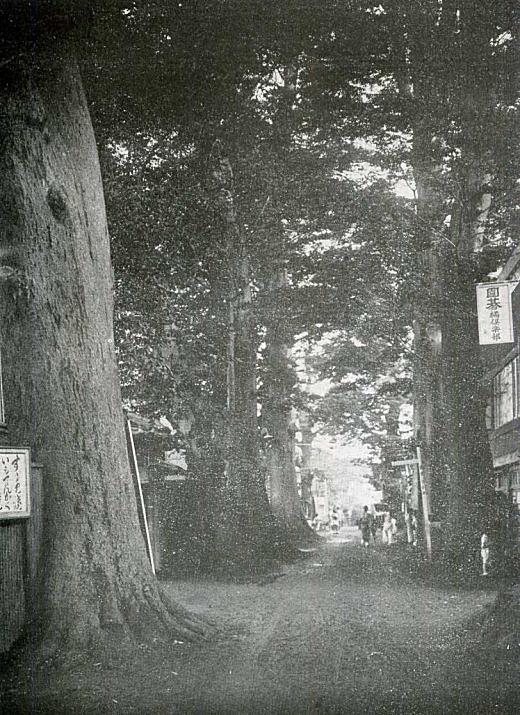 鬼子母神参道1933.jpg