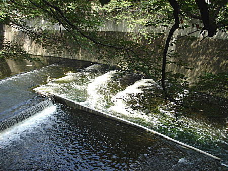 魚道1.JPG